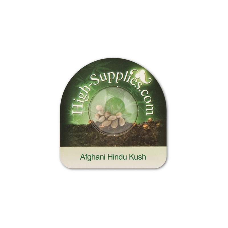 Graine de afghani hindu kush high supplies for Graine de cannabis interieur