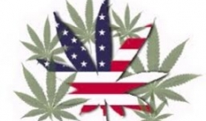 Few Facts and Myths about Marijuana That You May Not be Aware Of
