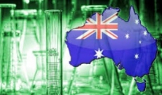 Did You Know - Australia is Home to World's Strongest Pot with 40% THC!